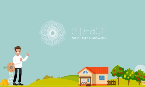 EIP-AGRI – Innovation Support Services
